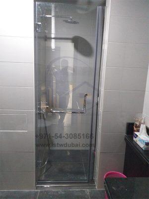Shower Swing Door
